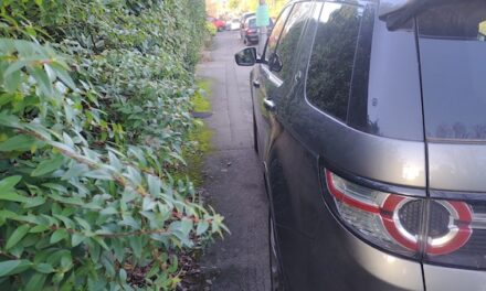Road safety charity calls for 'local solutions for local problems' to combat pavement parking
